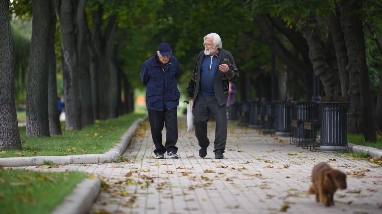 Как получить бесплатную психологическую помощь в Московской области